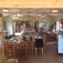 Farm Shop and Deli Counters